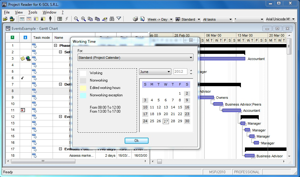 Viewer for Microsoft Project. Working time
